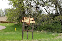 Ashfall Fossil Beds State Historical Park, Royal, United States