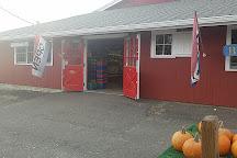 Blue Jay Orchards, Bethel, United States