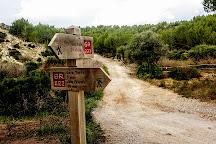 Cala Torta, Arta, Spain