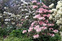 Dunedin Botanic Garden, Dunedin, New Zealand