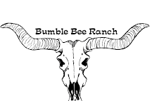 Bumble Bee Ranch, Bumble Bee, United States