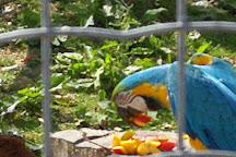 Parc Animalier d'Ecouves, Le Bouillon, France
