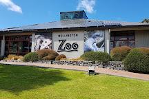 Wellington Zoo, Wellington, New Zealand