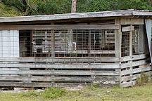 Babcock Ranch Preserve, Punta Gorda, United States