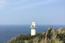 Ogoshihana Lighthouse, Hachijo-machi, Japan
