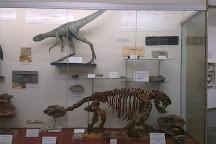 Museu De Historia Natural de Taubate, Taubate, Brazil