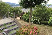 Nishihirahata Park, Matsuda-machi, Japan