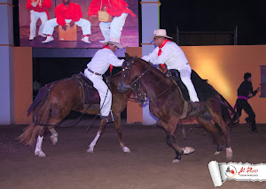 The Peruvian Paso 5