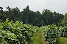 French Ridge Vineyards, Killbuck, United States