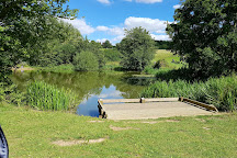 High Woods Country Park, Colchester, United Kingdom