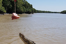 The Original Adelaide River Queen Jumping Crocodile Cruises, Darwin, Australia