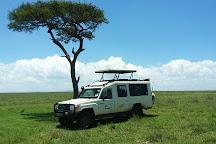 Mwema Africa Safaris, Nairobi, Kenya