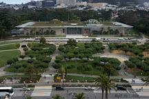 California Academy of Sciences, San Francisco, United States
