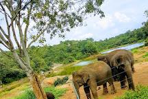 Bannerghatta Biological Park, Bengaluru, India