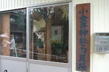 Koganei Shrine, Koganei, Japan