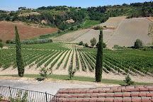 Azienda Agricola Castelvecchio, Terricciola, Italy