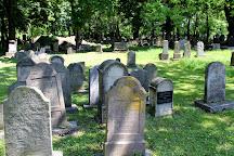 Jewish cemetery, Tarnow, Poland