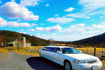 Point to Point Limousines, Leesburg, United States
