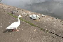 Heath Park, Cardiff, United Kingdom