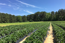 Hall Family Farm, Charlotte, United States