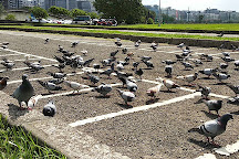 Meiti Riverside Park, Taipei, Taiwan