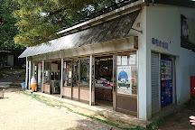 Kasamatsu Park, Miyazu, Japan