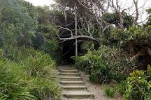 Shelly Beach, Port Macquarie, Australia