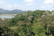 Soberania National Park, Panama City, Panama