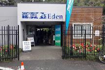 Eden Garden, Epsom, New Zealand
