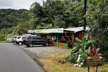 Parque Aventura San Luis, San Ramon, Costa Rica