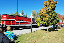 Lions Club Excursion Train, Ione, United States