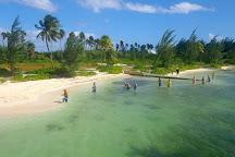 Acquarius Sea Tours, Seven Mile Beach, Cayman Islands