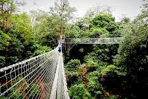 TreeTop Challenge, Gold Coast, Australia