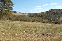Milky Way Farm, Pulaski, United States