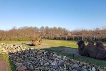 Dierenpark Zie-Zoo, Volkel, The Netherlands