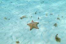 Playa El Cielo, Cozumel, Mexico