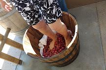 LDV Winery, Scottsdale, United States