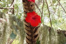 Ile Moro, Ile Des Pins, New Caledonia