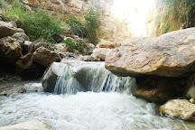 Wadi Bin Hammad, Karak, Jordan