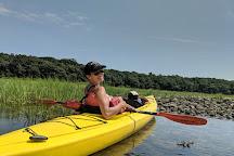Mashomack Preserve, Shelter Island, United States