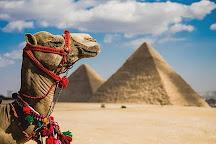 Kairo Ausfluge, Cairo, Egypt