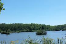Resthaven Wildlife Area, Castalia, United States