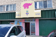 Pinball Pete's, East Lansing, United States