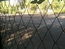 Теннисный Корт, улица Татищева на фото Астрахани