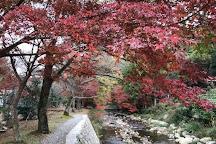 Taineiji Temple, Nagato, Japan