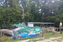 Jean Lafitte Swamp Tours, Marrero, United States
