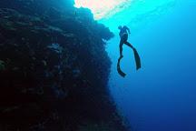 VITAL Freediving, St. John, U.S. Virgin Islands