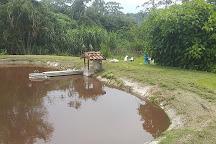 Finca Sermide Agroturismo, Orosi, Costa Rica