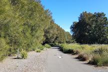 Blaxland Riverside Park, Homebush, Australia