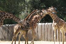 Sacramento Zoo, Sacramento, United States